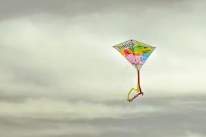 kite-2104099_1280