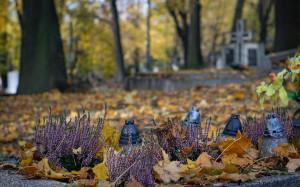 cemetery-2821279_1280
